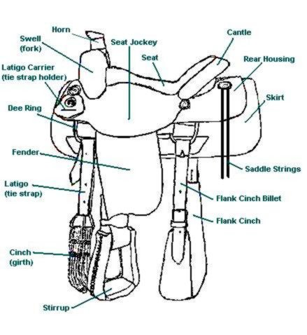 Parts of a Saddle, Saddle Part Names