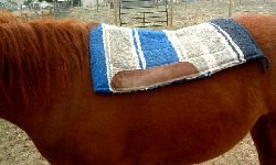 Pull Saddle Blanket Back Into Place